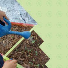 Professores e alunos do Campus EaD levam educação ambiental para crianças da rede pública de Caicó